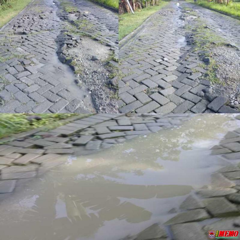 Jalan Poros Desa Baturono Rusak Parah, Pemerintah Tutup Mata?