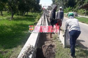 Pembangunan Pavingisasi dan Sanitasi Desa Tebuwung Diduga Salahi Bestek